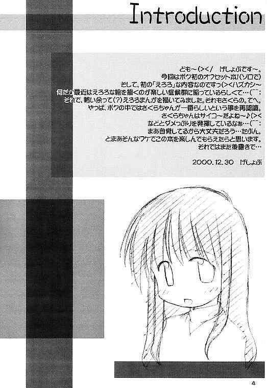 Cardcaptor Sakura na hon 2 2