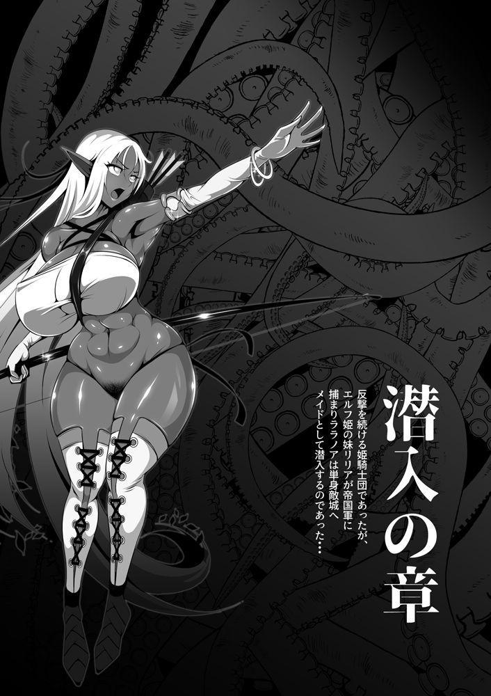 Inmon Akuochi no Hime Kishidan 9