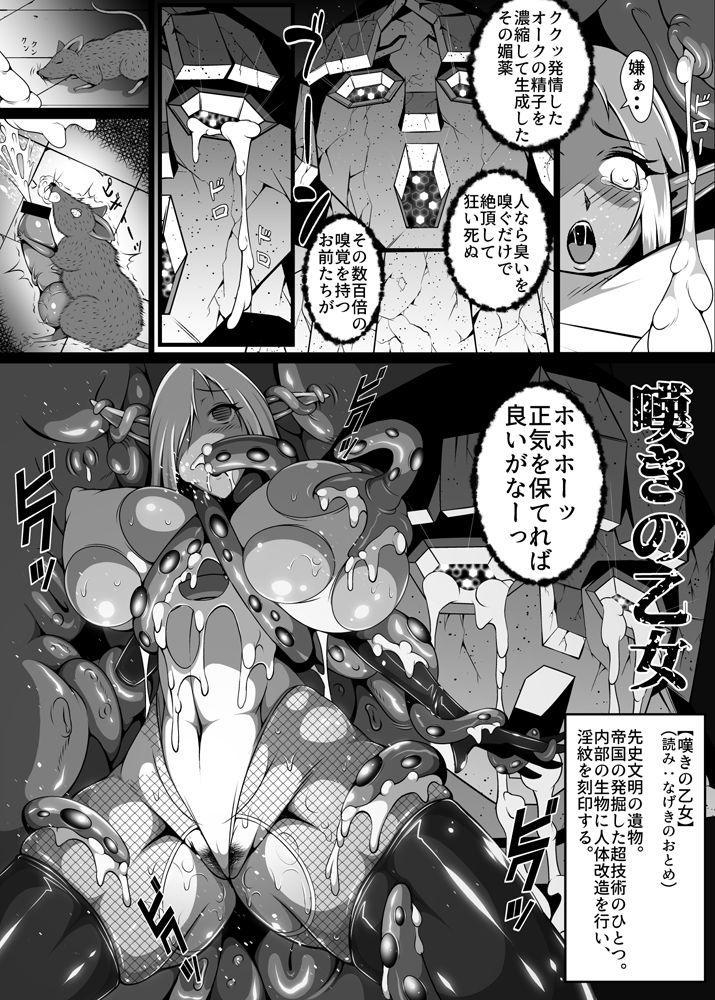Inmon Akuochi no Hime Kishidan 20