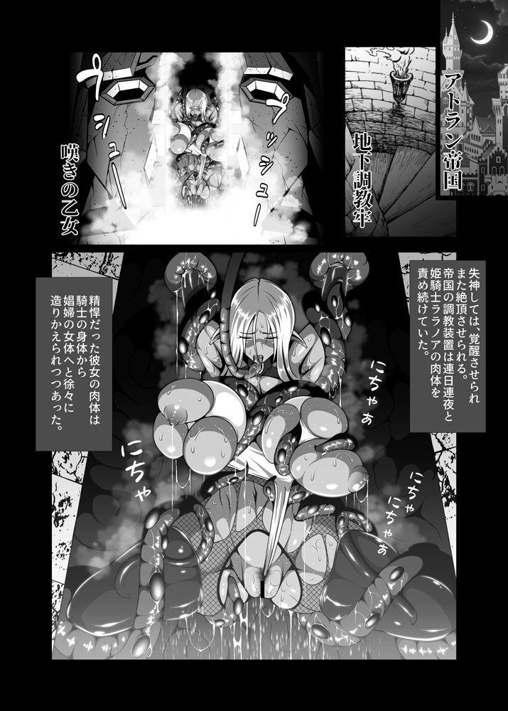 Inmon Akuochi no Hime Kishidan 22