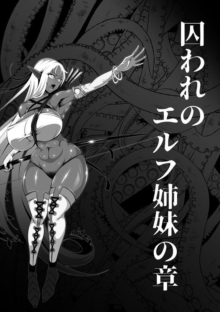 Inmon Akuochi no Hime Kishidan 41