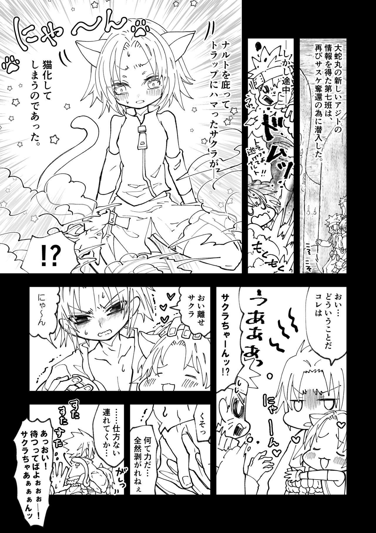 Nyan Nyan Sakura-chan 2
