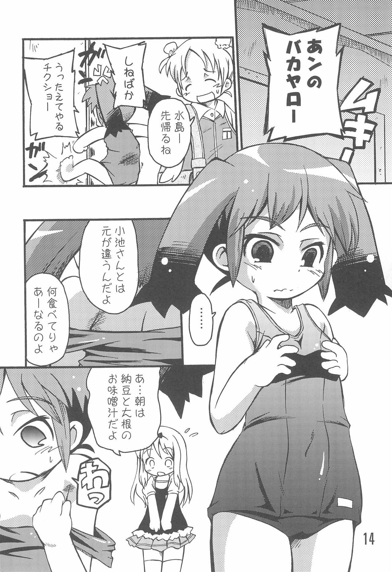 (C74) [Laurier (Kurosaki Mairi)] Mizushima-san to Koike-san 13