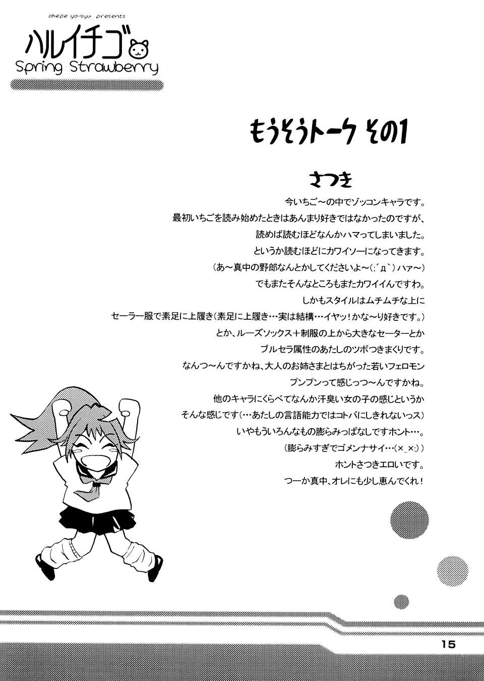 Haru Ichigo - Spring Strawberry 14