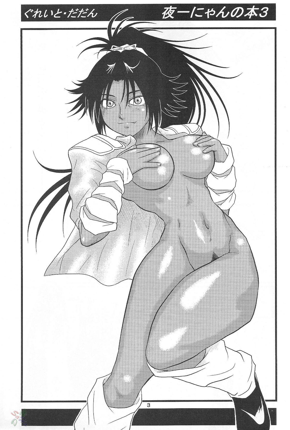 Yoruichi Nyan no Hon 3 1