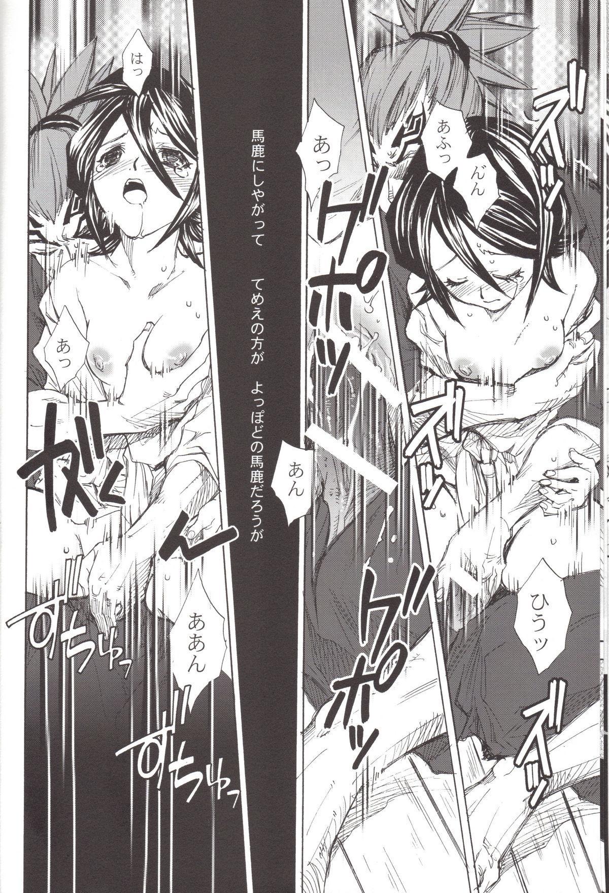 BLEACH Koiji Kkakeru Rukia sairokuhon 14