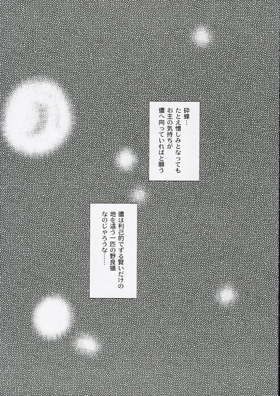 Shinobi 17