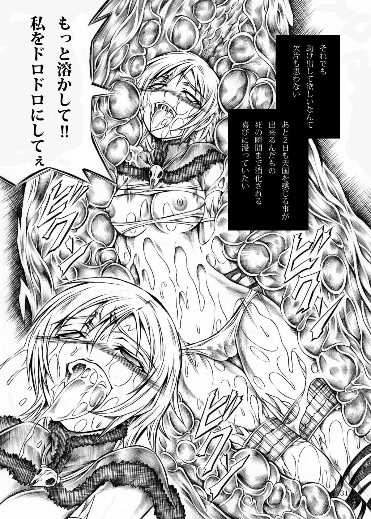 Solo Hunter no Seitai 30