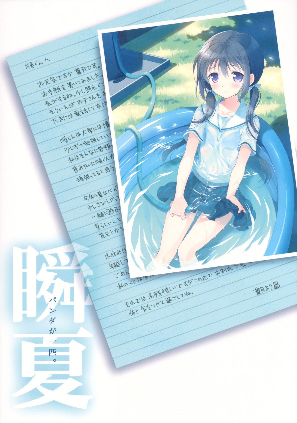 (C82) [Panda ga Ippiki. (Komizu Miko)] Shunka - Watashi to Ani no Natsuyasumi | One Second of Summer - My Brother's and My Summer Vacation [English] [RedBlueGreen] 41